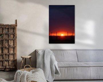 Zonsondergang over het windmolenpark van visitlimburg