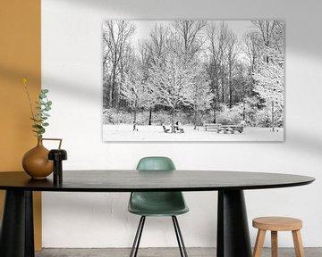 Winter im Alblasserbos von Beeldbank Alblasserwaard