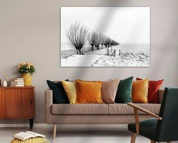 Reihe von Weiden in einer verschneiten Landschaft von Beeldbank Alblasserwaard