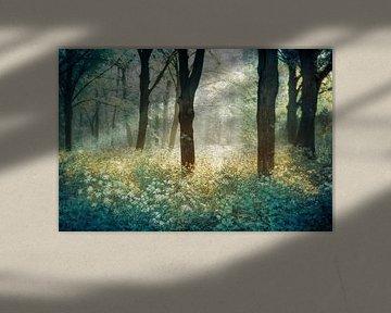 Forêt de Tenom van Lars van de Goor
