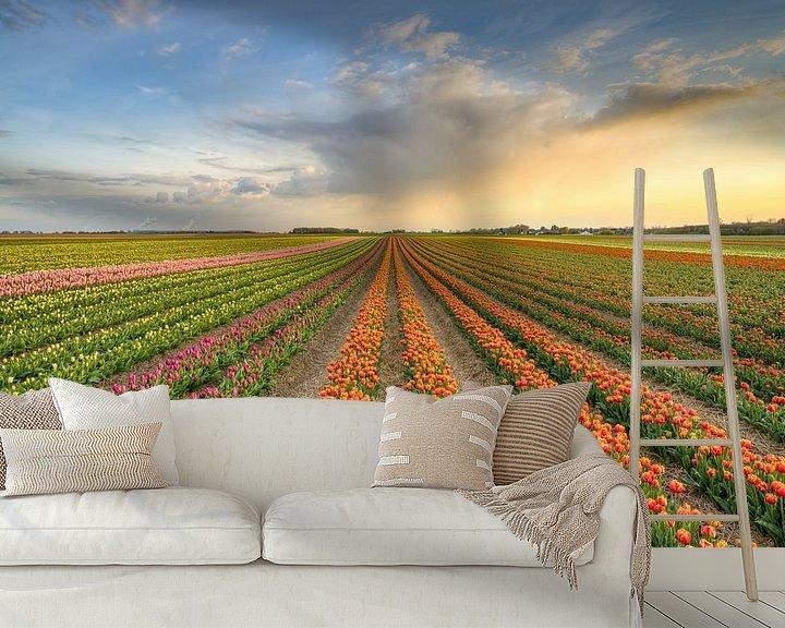 Sfeerimpressie behang: Tulpenveld in het Rijndistrict van Neuss van Michael Valjak