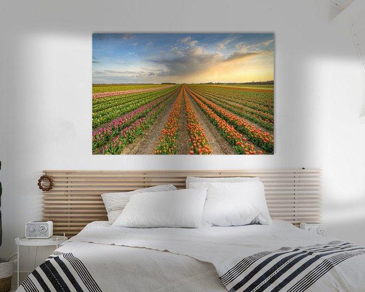 Sfeerimpressie: Tulpenveld in het Rijndistrict van Neuss van Michael Valjak
