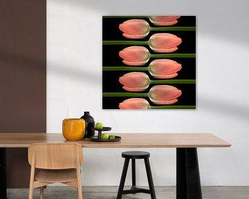 tulipes sur Klaartje Majoor