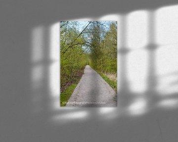 Een pad de toekomst in