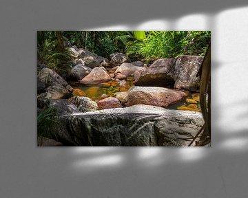 Wasserstelle mit Granitfelsen auf der Seychellen Insel Mahé von Reiner Conrad