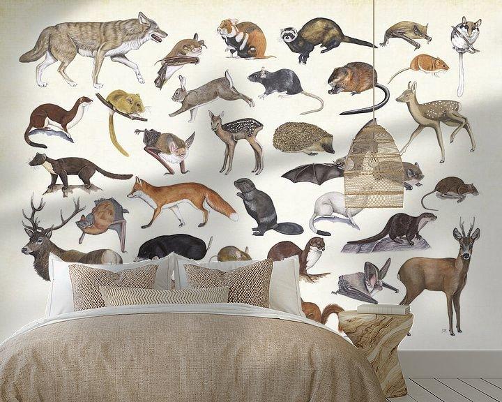 Sfeerimpressie behang: Zoogdieren van Nederland. van Jasper de Ruiter