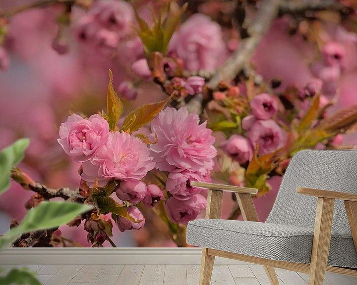 Sfeerimpressie behang: Bloesems van een Japanse kerselaar van Kristof Lauwers