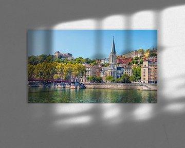 Lyon van Manjik Pictures