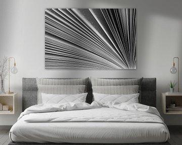 Bladeren gespiegeld van Stephan Van Reisen