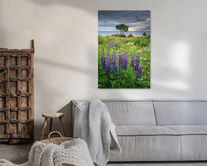 Beispiel: Lupinen am Meer von FineArt Prints | Zwerger-Schoner |