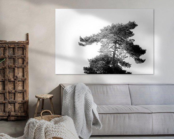 Beispiel: Baum in Schwarz und Weiß von Steven Dijkshoorn
