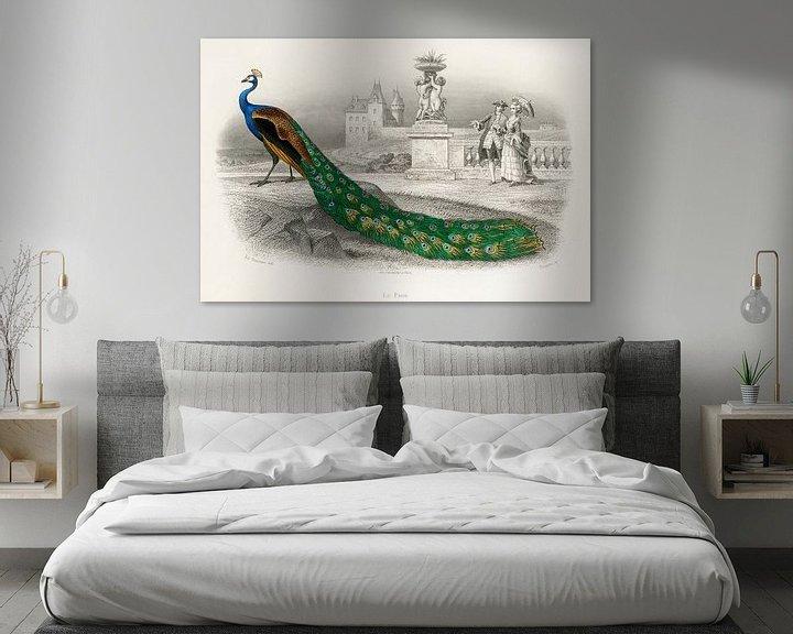 Beispiel: Majestätisch koloriertes Porträt eines Pfaus