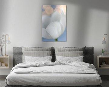 Weiße Tulpe mit Bokeh-Kugeln von Jefra Creations