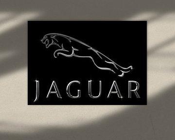 Jaguar Chrom von Bert Hooijer