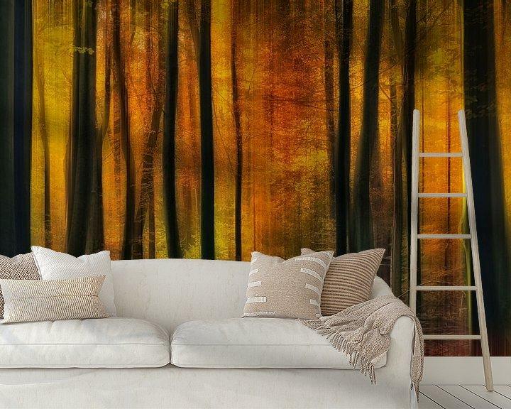 Sfeerimpressie behang: Herfstsfeer van Jan Paul Kraaij