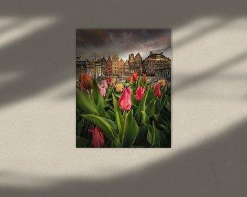 Tulpenfest in Amsterdam von Nick de Jonge - Skeyes