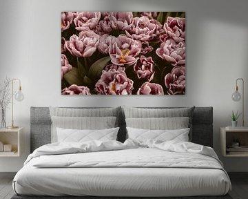 Rosa Blumen von shanine Roosingh