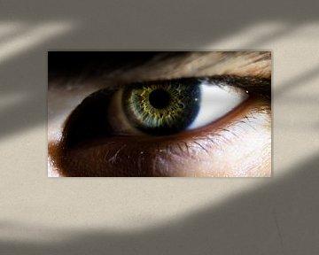 Mad eye! van Remy van der Pol