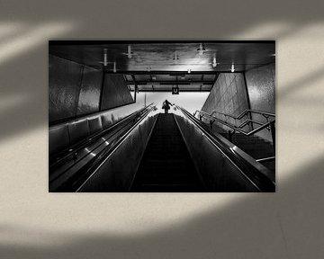 Stufen ins Licht von Norbert Sülzner
