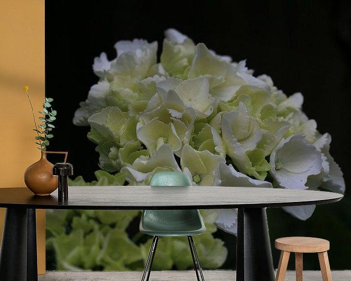 Sfeerimpressie behang: Witte bloem close-up van Paul Franke