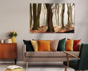 Dansende bomen van Ingrid Stoffels