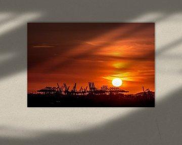 Kranen als silhouetten voor de ondergaande zon in de haven van Hamburg van Annette Hanl