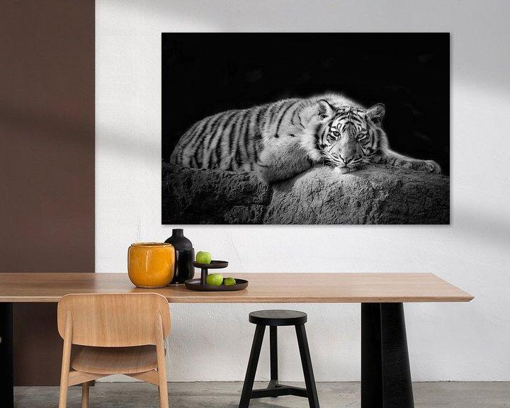 Beispiel: Sibirischer Tiger von Tilly Meijer