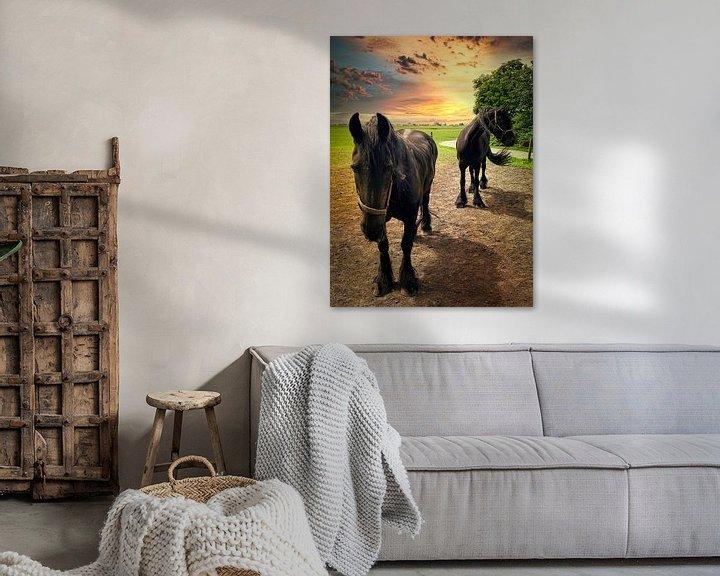 Beispiel: Zwei Friesenpferde von Digital Art Nederland