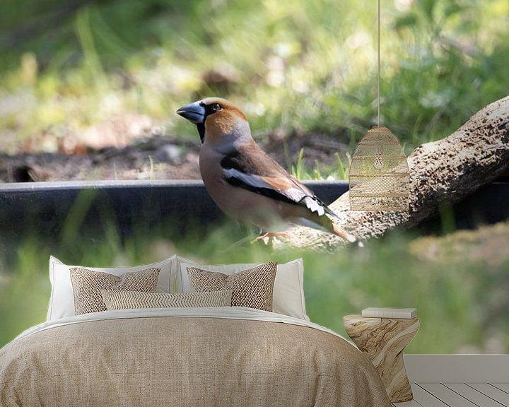 Impression: Bouvreuil sur l'eau | oiseaux du Sud-Kennemerland sur Dylan gaat naar buiten