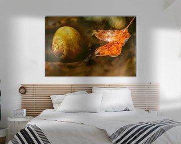 Autumn dream von Irene Lommers