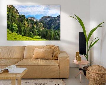 Schilderachtig bergbos boven het Grote Walserdal van Andreas Föll