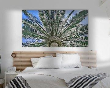 Onder een Palmboom - Het Vakantiegevoel - Schilderij