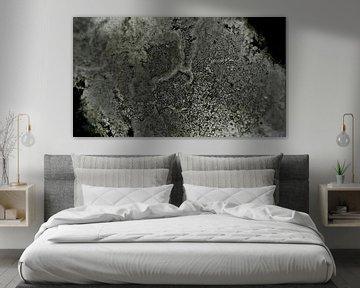 Abstract - Figuratief - Grunge - Marmer Textuur - Schilderij