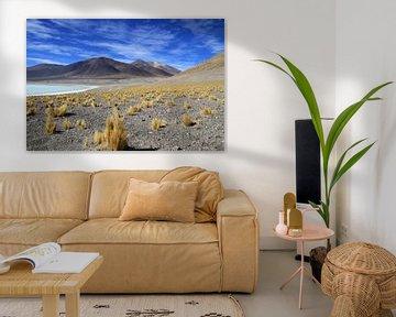 Hoog in de Andes van Antwan Janssen