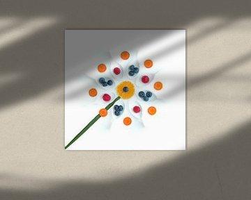 Een bloem van groente en fruit van Klaartje Majoor