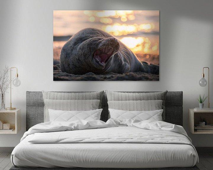 Sfeerimpressie: Zeehond gapend aan het strand van Thom Brouwer