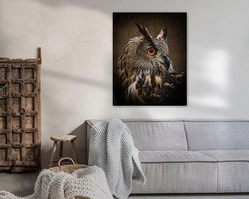 Uil portret van een oehoe in bruin