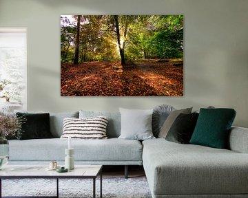 Autumn carpet van Igwe Aneke