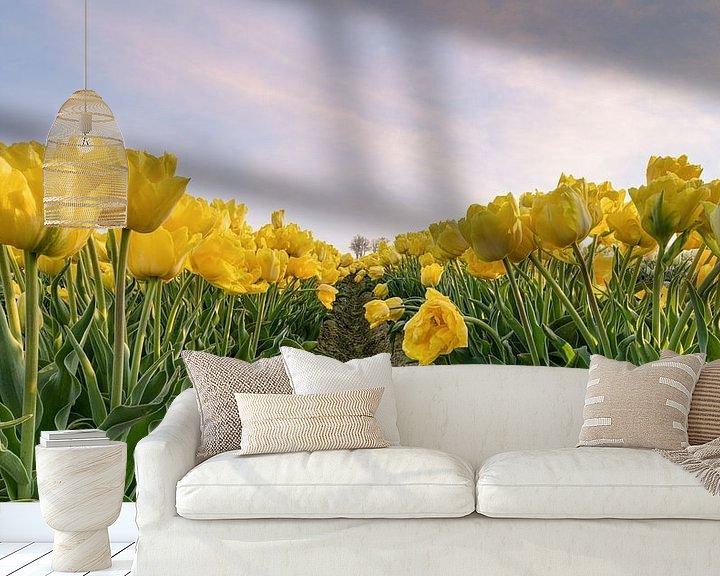Sfeerimpressie behang: Geel tulpenveld van Michael Valjak
