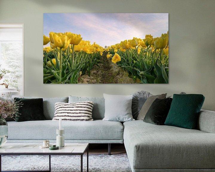 Sfeerimpressie: Geel tulpenveld van Michael Valjak