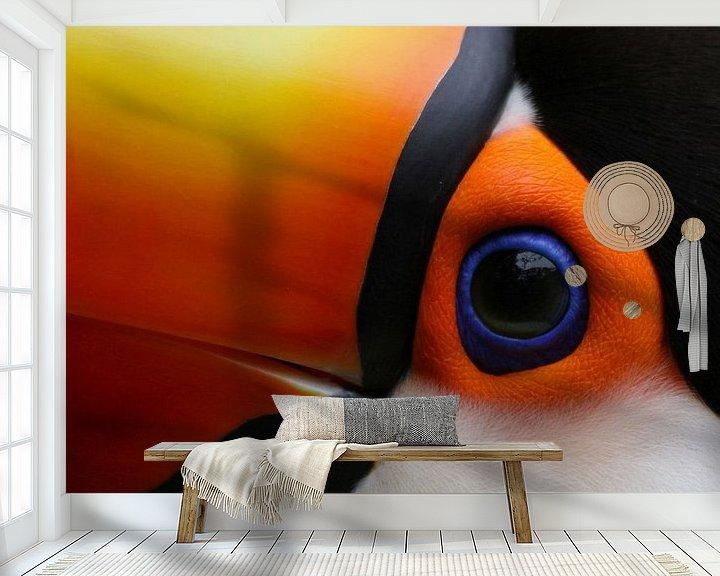 Impression: Het oog van de Toekan sur Antwan Janssen