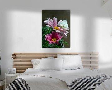 Weißer Schmetterling auf rosa Blume von Arthur Hooijer