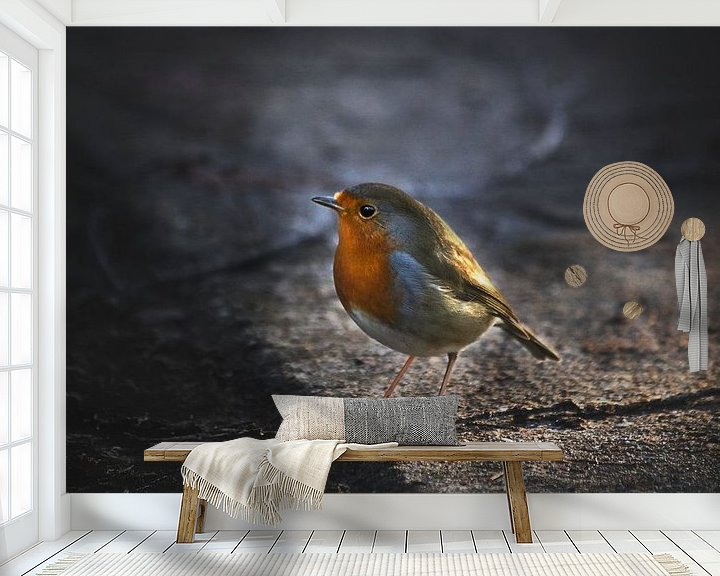Beispiel fototapete: Robin von Marijke Groos