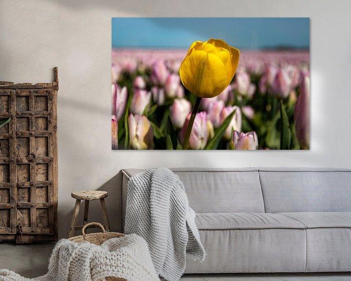 Sfeerimpressie: Tulpen van Koos de Vries