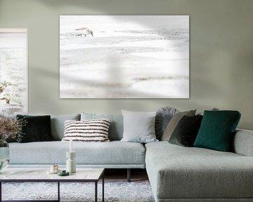Drieteenstrandloper op Texel van Danny Slijfer Natuurfotografie