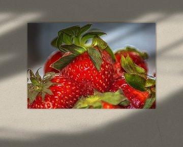 Vruchten : Aardbeien van Michael Nägele