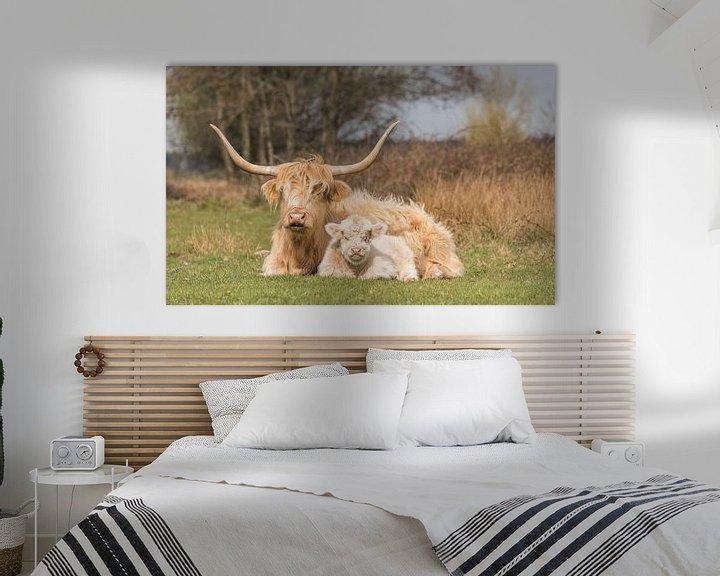 Sfeerimpressie: Schotse Hooglander met kalf, blond van Ans Bastiaanssen