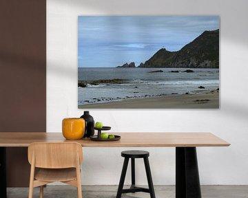 Nugget point - a view from the beach van Jeroen van Deel