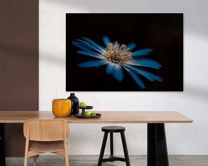 Sfeerimpressie: Blauwe bloem van Miranda Snoeijen