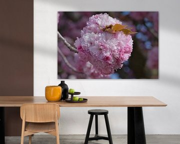 Een bolletje  roze lente bloessems van J..M de Jong-Jansen